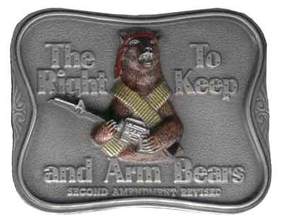 pretty phrase bear arms explicitly arms person carry bear meant
